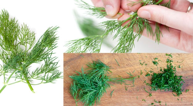 How to store dill in the refrigerator for the winter video