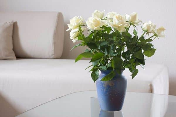 How to save roses longer