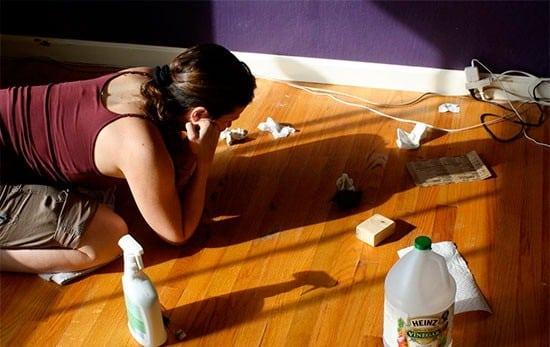 Чем можно мыть ламинат?