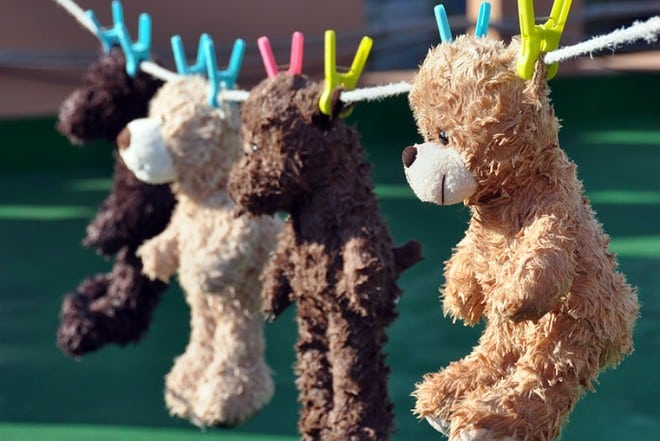 Rules for drying plush animals