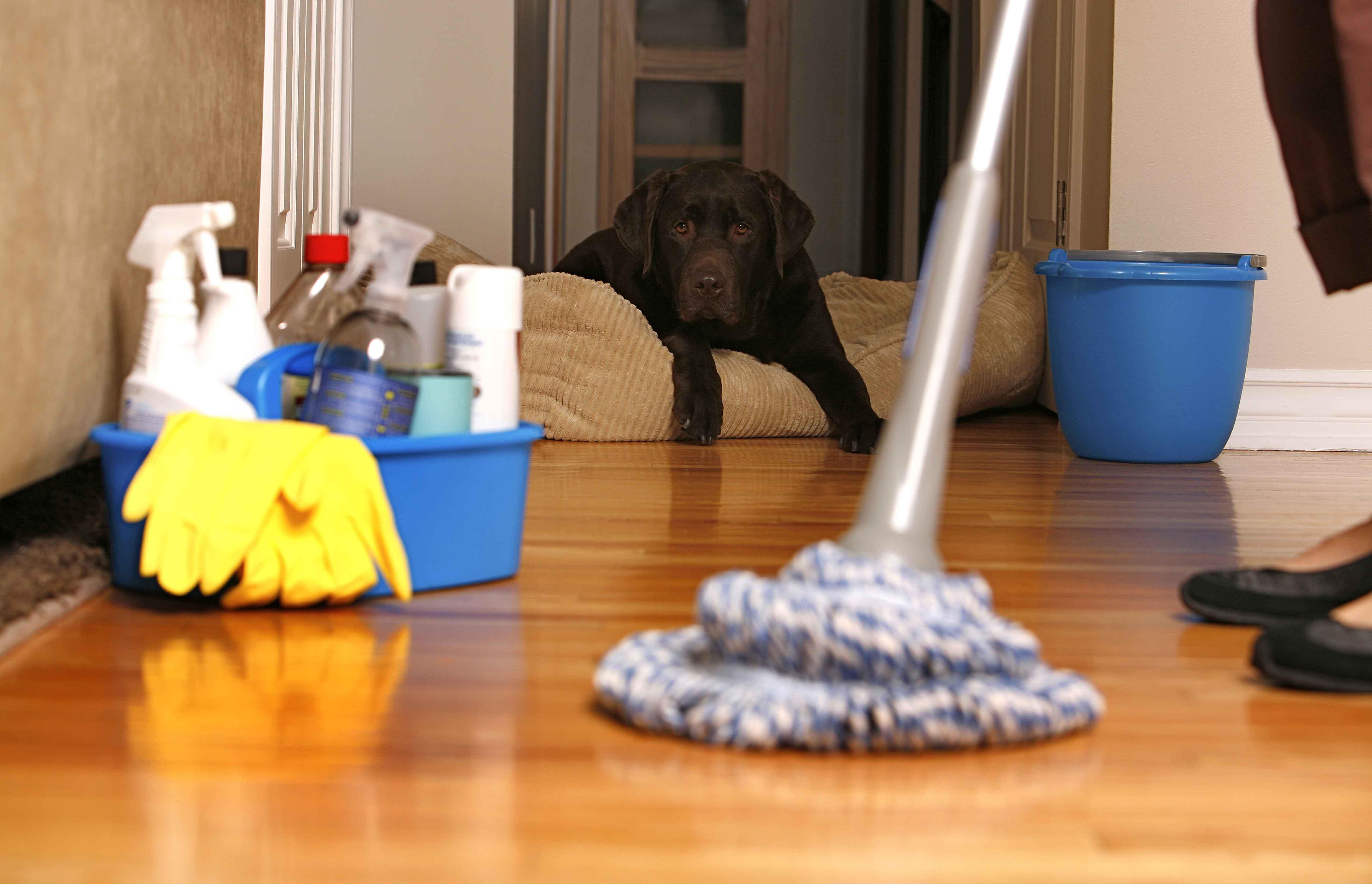 Порядок уборки квартиры