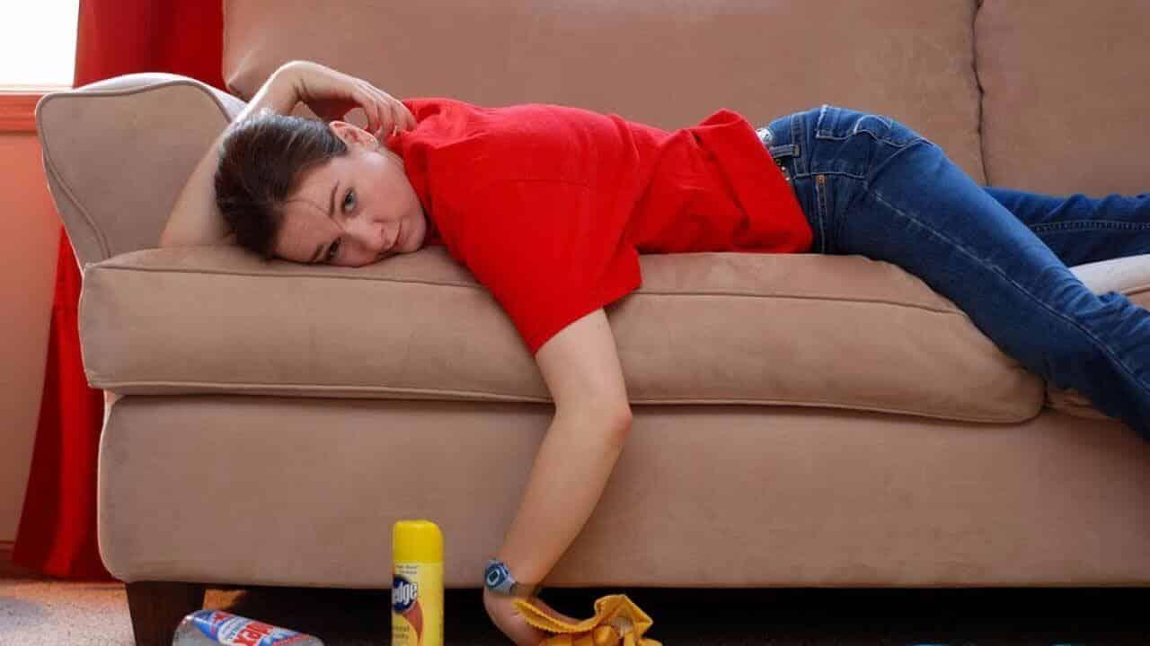 Пахнет диван как сделать экспертизу