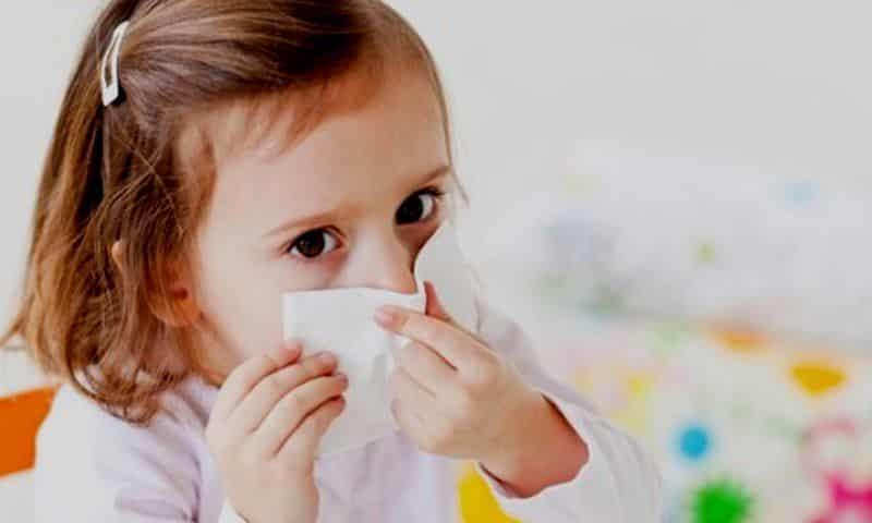 Лечение зеленых соплей в домашних условиях
